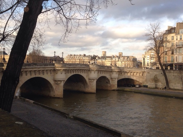 Winter on the Seine