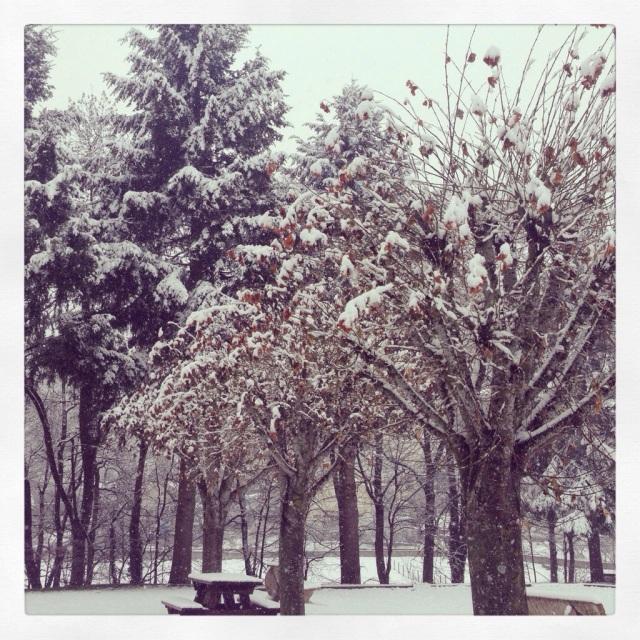 Winter in Yssingeaux