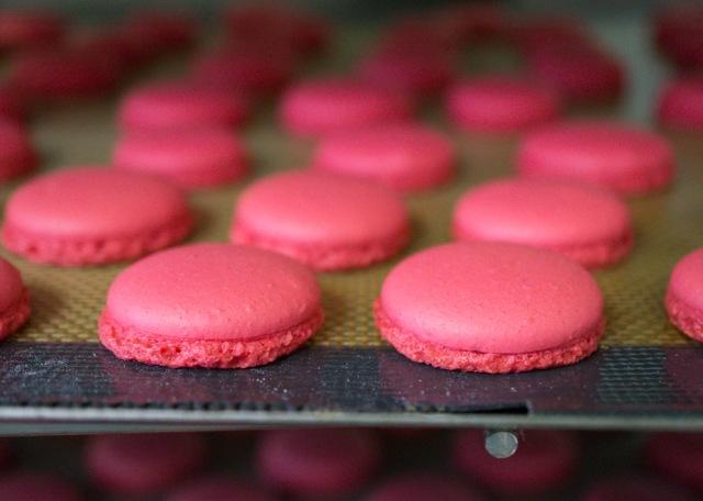 Raspberry Macaron shell