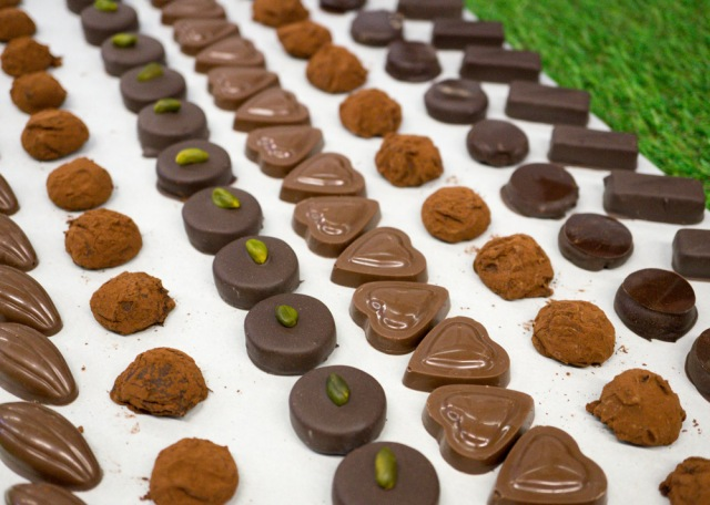Molded and Hand Dipped Chocolates